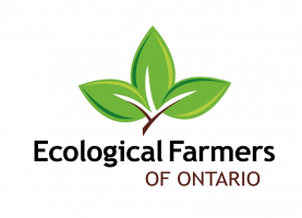 Ecological Farmers of Ontario Field day